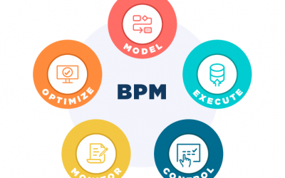 What is Business Process Management (BPM)?